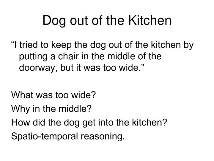 Dog out of the Kitchen
