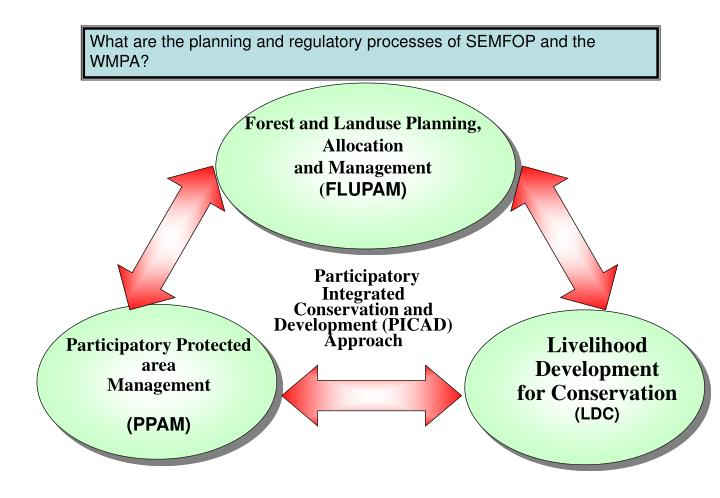 What are the planning and regulatory processes of SEMFOP and the WMPA?