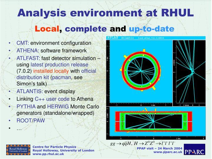 Analysis environment at RHUL