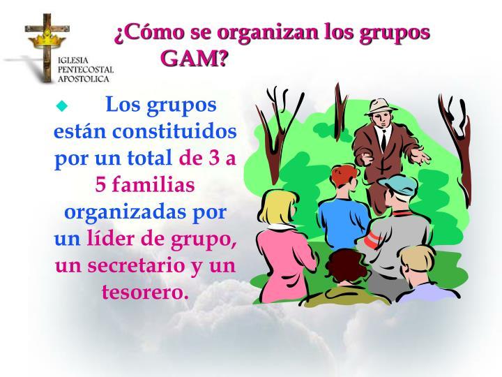 ¿Cómo se organizan los grupos GAM?