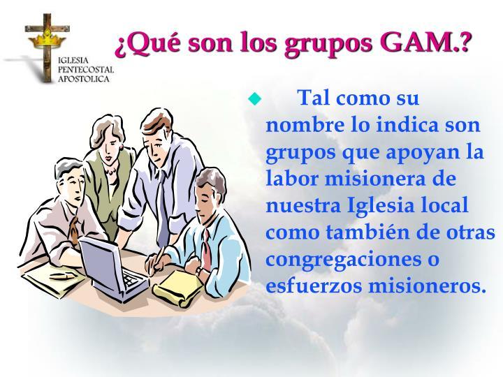 ¿Qué son los grupos GAM.?