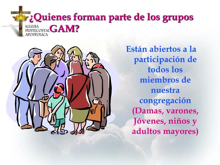¿Quienes forman parte de los grupos GAM?