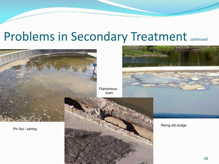 Problems in Secondary Treatment