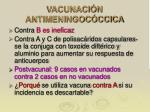 vacunaci n antimeningoc ccica
