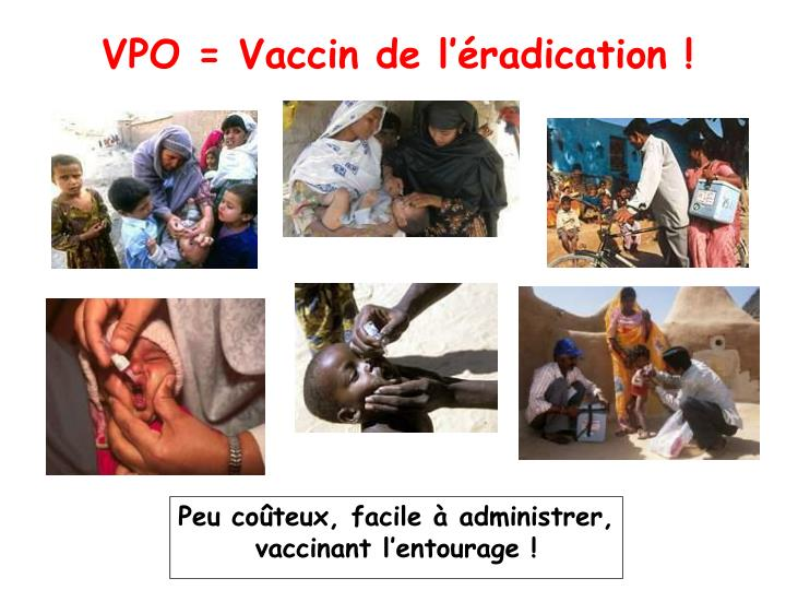 VPO = Vaccin de l'éradication !