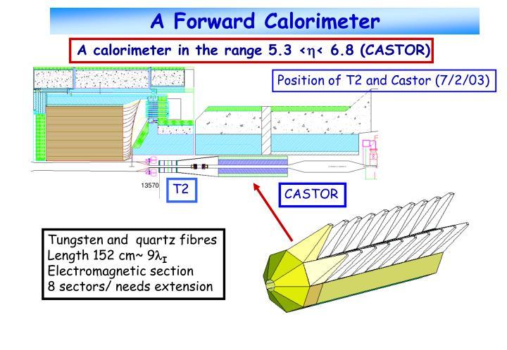 A Forward Calorimeter