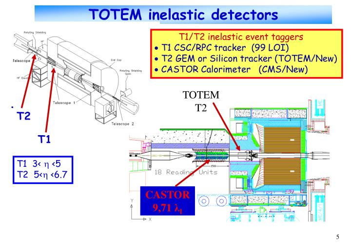 TOTEM inelastic detectors