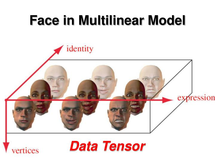 Face in Multilinear Model