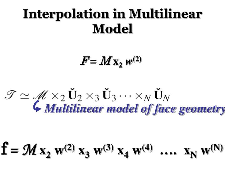 Interpolation in Multilinear Model