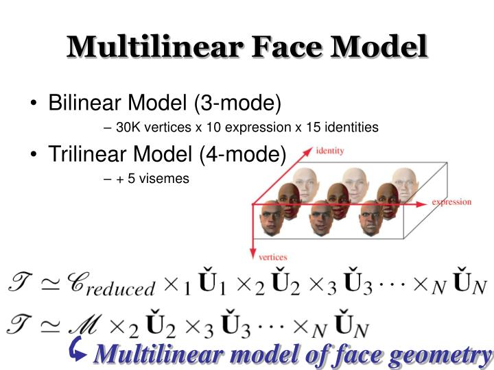Multilinear Face Model