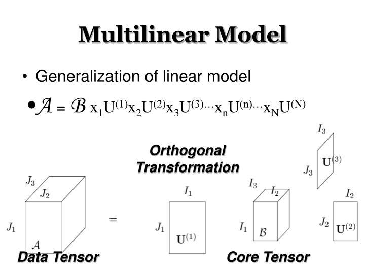 Multilinear Model