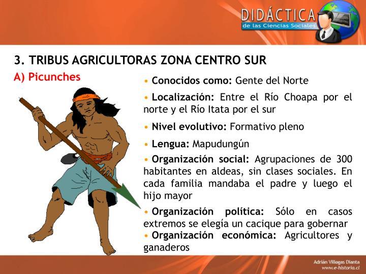 3. TRIBUS AGRICULTORAS ZONA CENTRO SUR