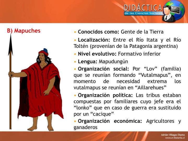 B) Mapuches