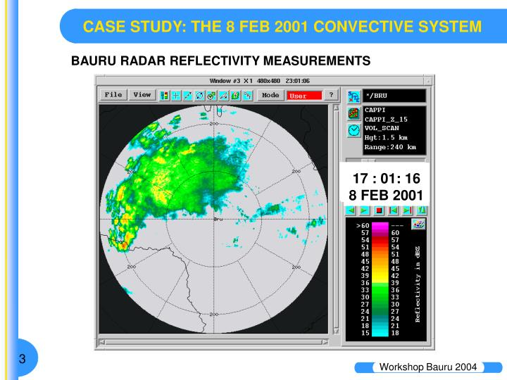 CASE STUDY: THE 8 FEB 2001 CONVECTIVE SYSTEM
