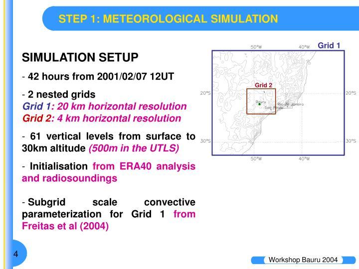 STEP 1: METEOROLOGICAL SIMULATION
