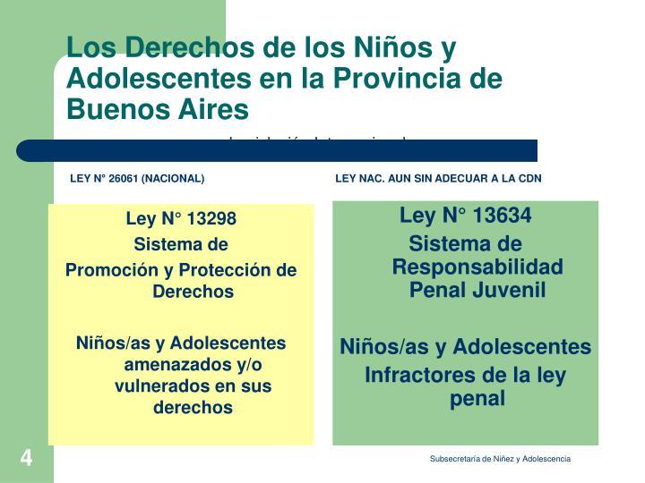 Ley N° 13298