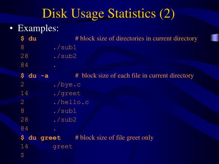 Disk Usage Statistics (2)