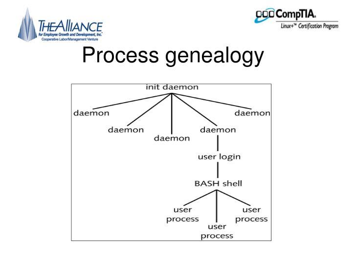 Process genealogy