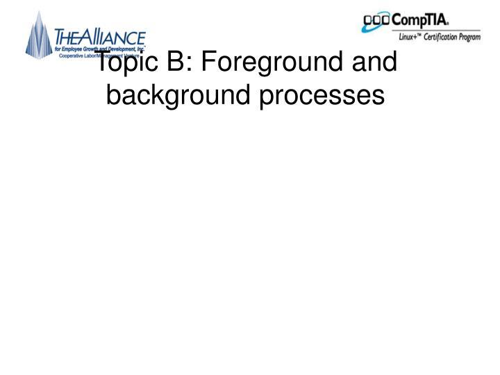 Topic B:
