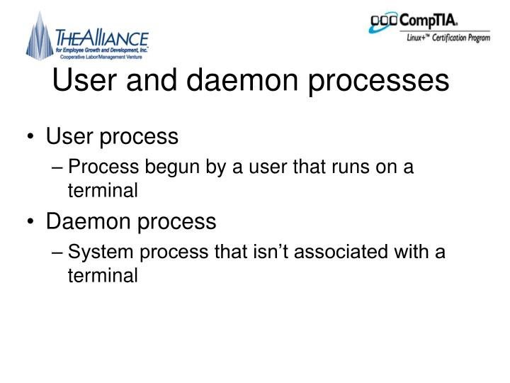 User and daemon processes