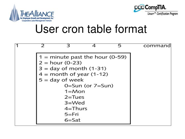 User cron table format