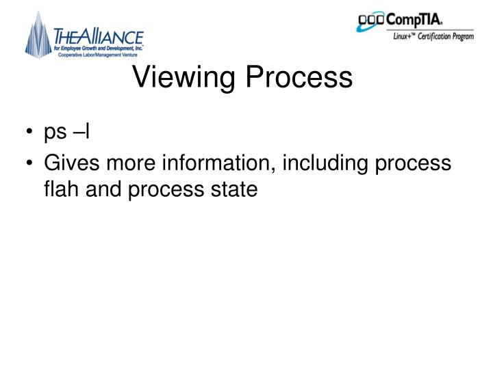 Viewing Process