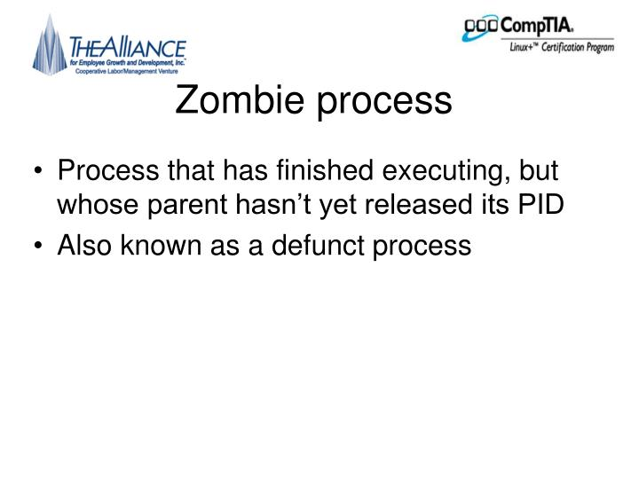 Zombie process