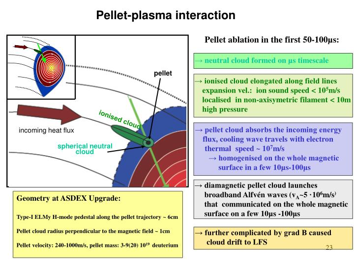 Pellet-plasma interaction
