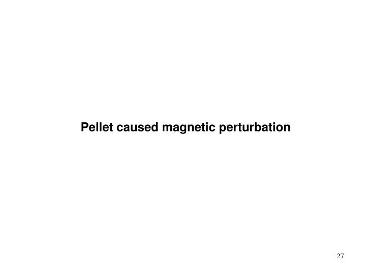 Pellet caused magnetic perturbation