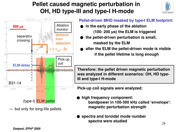 Pellet caused magnetic perturbation in
