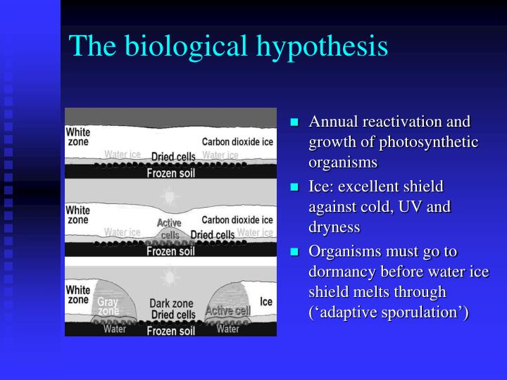 The biological hypothesis