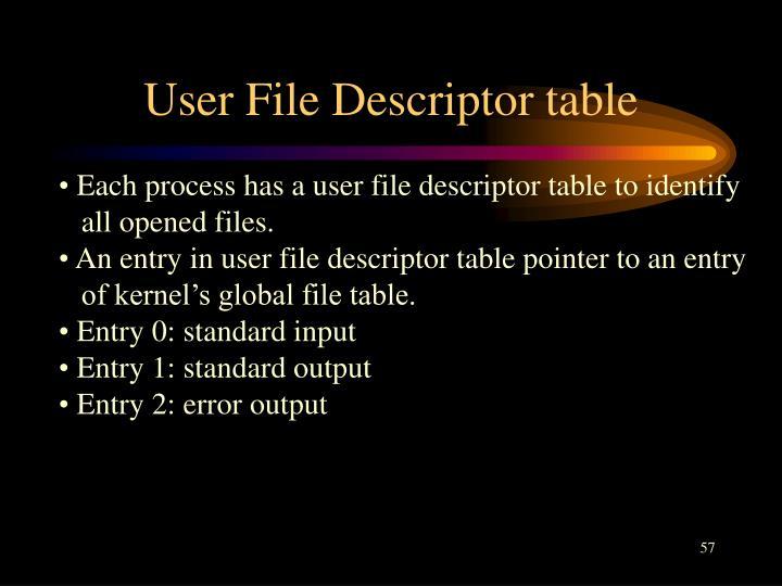User File Descriptor table