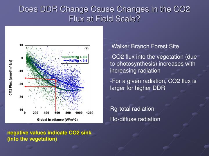 Does DDR Change Cause Changes in the CO2 Flux at Field Scale?