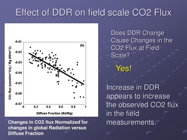 Effect of DDR on field scale CO2 Flux