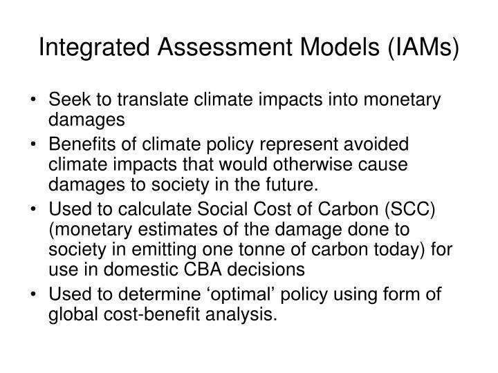 Integrated Assessment Models (IAMs)