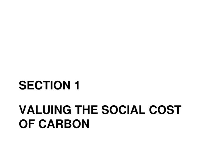 Valuing the social cost of carbon