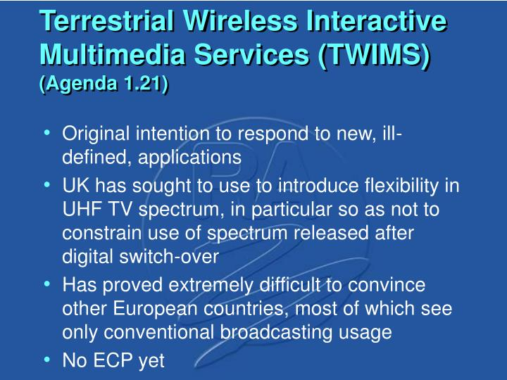 Terrestrial Wireless Interactive Multimedia Services (TWIMS)