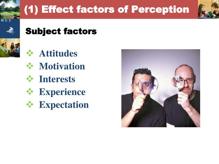 (1) Effect factors of Perception