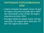 tantangan pengembangan sdm