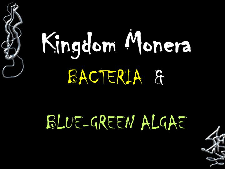 kingdom monera general characteristics Protista classification 1 general characteristics and structures - these organisms once were placed in a single kingdom but with new genetic.