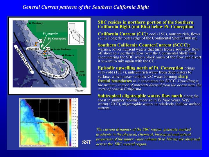 General Current patterns of the Southern California Bight
