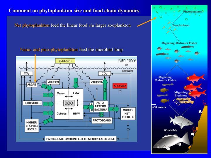 Net phytoplankton