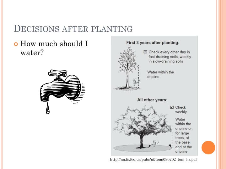 Decisions after planting