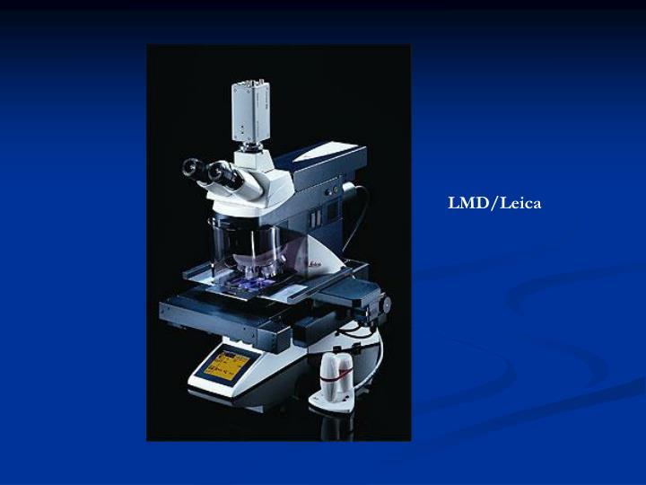 LMD/Leica