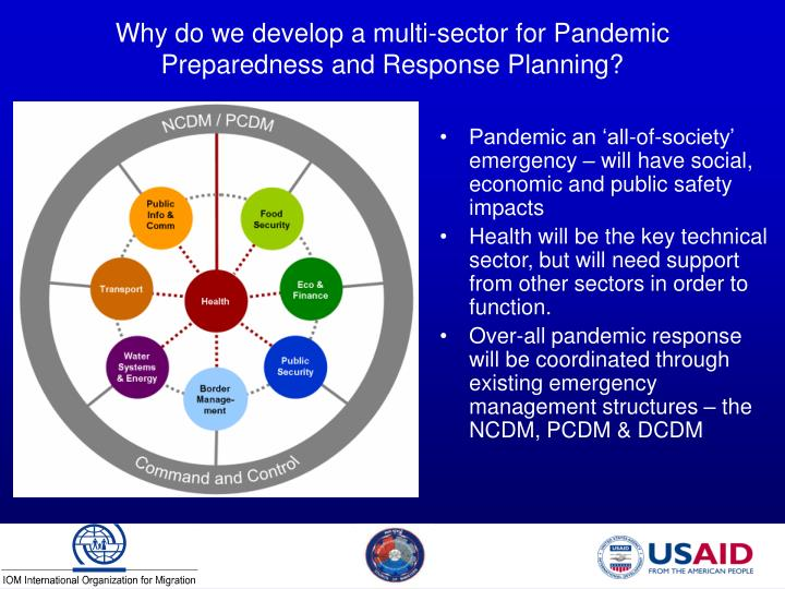 Why do we develop a multi sector for pandemic preparedness and response planning