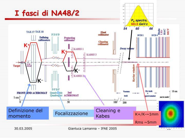 I fasci di NA48/2