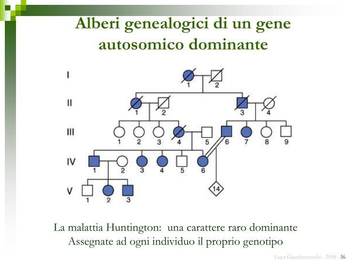 Alberi genealogici di un gene