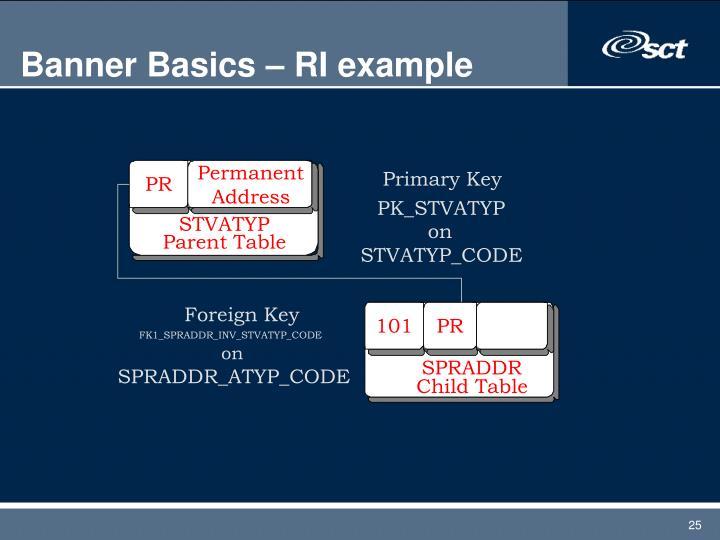 Banner Basics – RI example