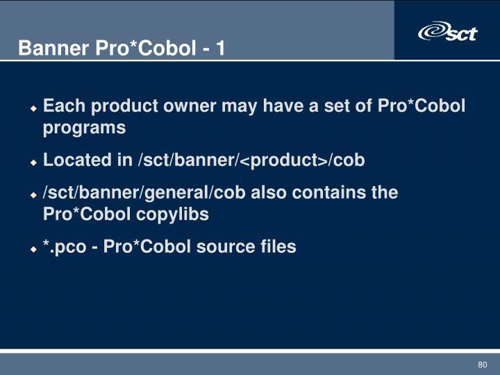 Banner Pro*Cobol - 1