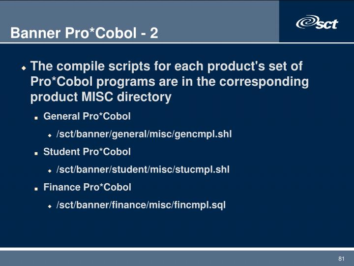 Banner Pro*Cobol - 2